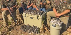 best dove hunting chair